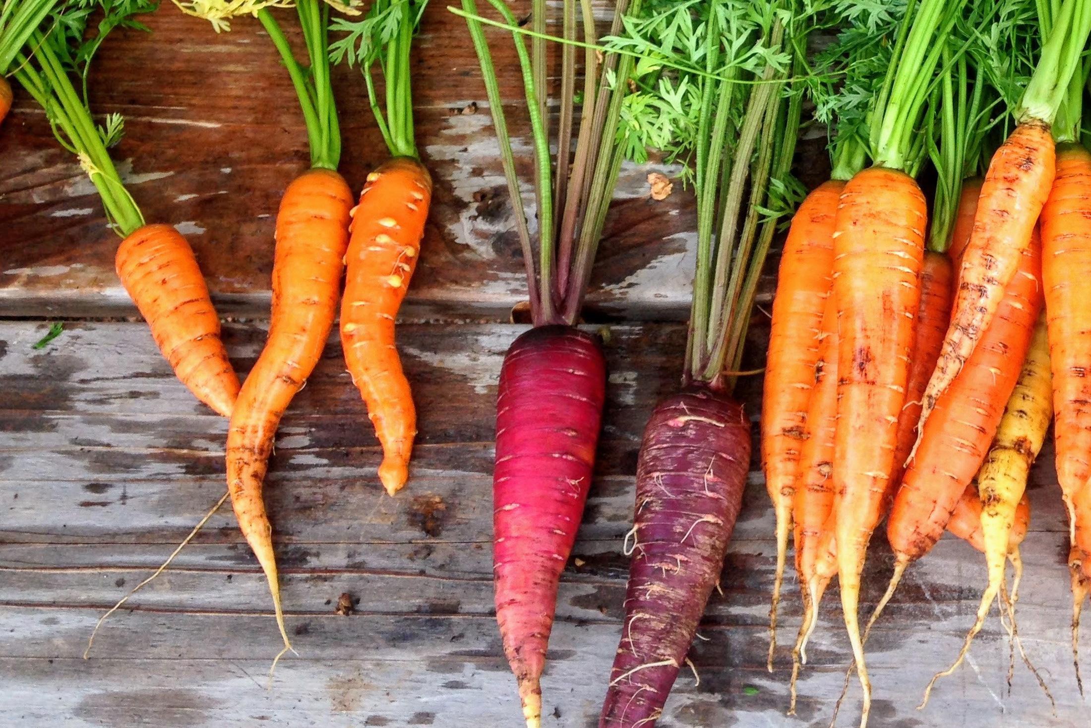 Sonnenbrand? Nicht mit dem richtigen Gemüse!