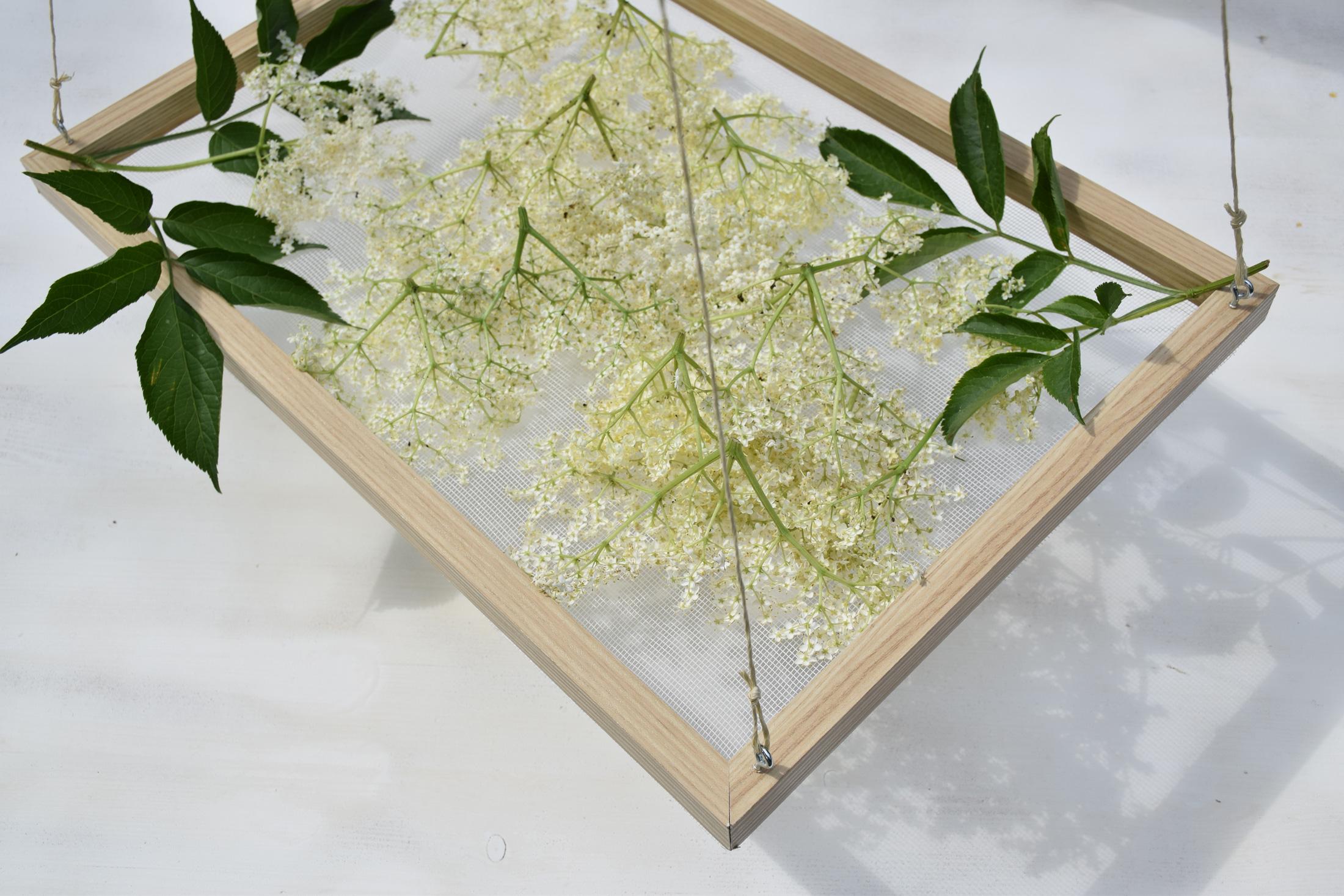 Trockenrahmen für Holunderblüten