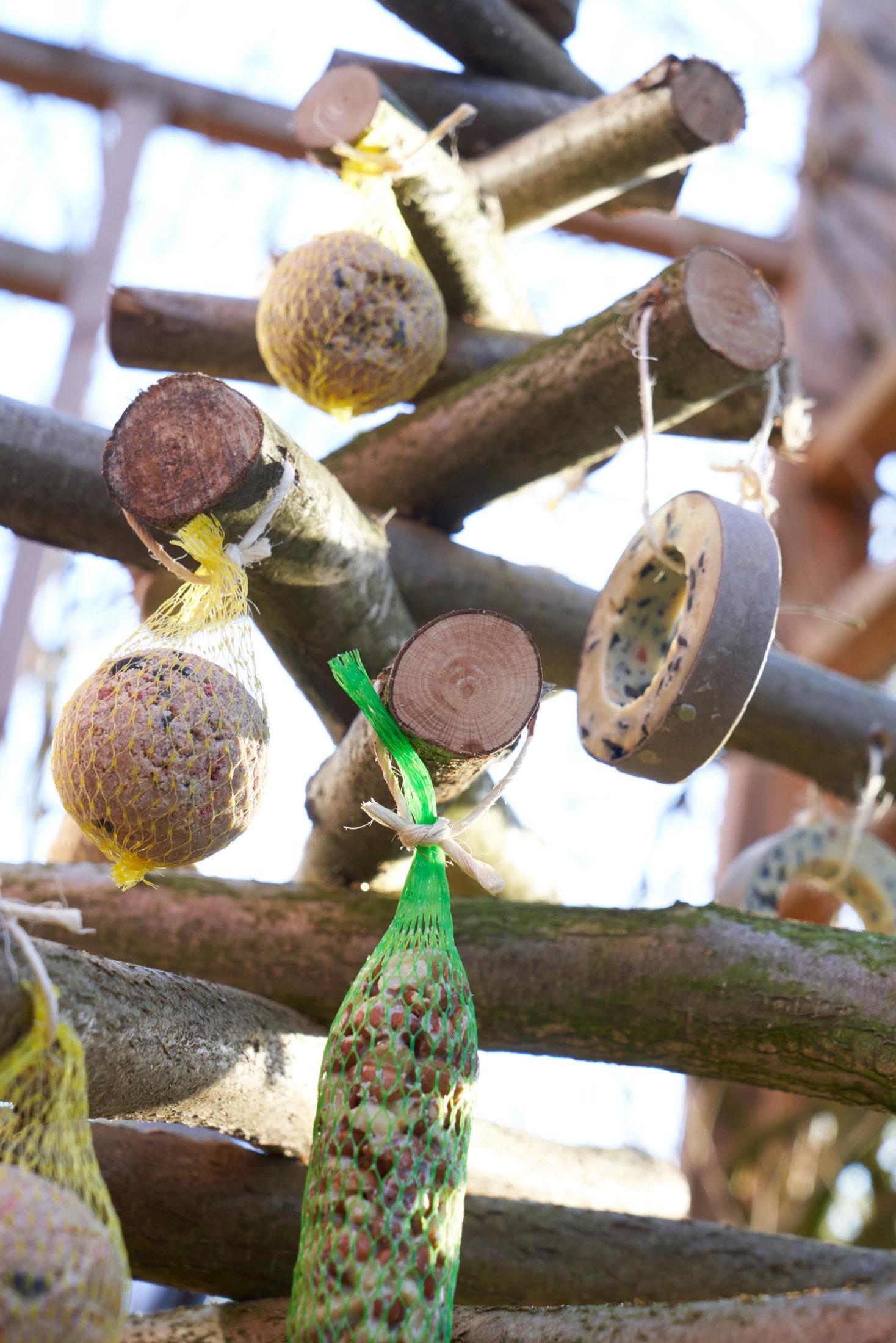 Hübscher Futterbaum für Vögel